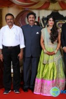 Producer Raviprasad Daughter Marriage Reception (17)
