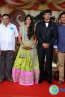 Producer Raviprasad Daughter Marriage Reception (19)