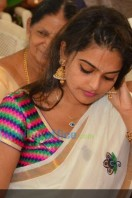 Sruthi Lakshmi Marriage Pics (60)