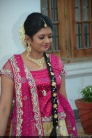 Sruthi Lakshmi Wedding Reception Photos (12)