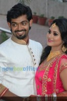 Sruthi Lakshmi Wedding Reception Photos (16)