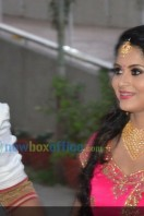 Sruthi Lakshmi Wedding Reception Photos (19)