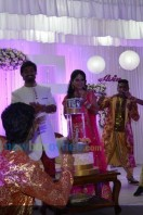 Sruthi Lakshmi Wedding Reception Photos (31)