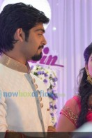 Sruthi Lakshmi Wedding Reception Photos (35)