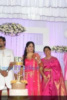 Sruthi Lakshmi Wedding Reception Photos (37)