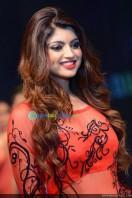 Akanksha Puri at Kerala Fashion League (7)