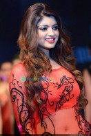 Akanksha Puri at Kerala Fashion League (8)