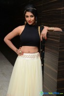Kruthika at Rojulu Marayi Audio Launch (1)