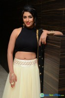 Kruthika at Rojulu Marayi Audio Launch (2)