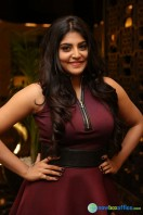 Manjima at Sahasam Swasaga Sagipo Audio Launch (20)