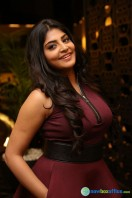 Manjima at Sahasam Swasaga Sagipo Audio Launch (21)