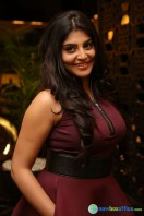 Manjima at Sahasam Swasaga Sagipo Audio Launch (22)