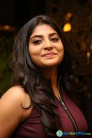 Manjima at Sahasam Swasaga Sagipo Audio Launch (24)