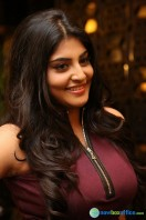 Manjima at Sahasam Swasaga Sagipo Audio Launch (26)