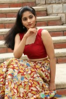 Punarnavi Bhupalam New Photos (8)