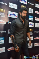 Rana Daggubati at SIIMA 2016 Press Meet (3)