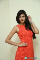 Swetha Jadhav at Deepshikha Mahila Club Press Meet (3)