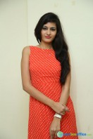Swetha Jadhav at Deepshikha Mahila Club Press Meet (4)