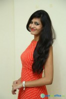 Swetha Jadhav at Deepshikha Mahila Club Press Meet (5)