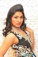 Ankita Photos