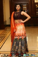 Priyanka Ramana at Apartment Audio Launch (10)