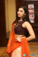 Priyanka Ramana at Apartment Audio Launch (14)