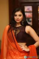 Priyanka Ramana at Apartment Audio Launch (15)