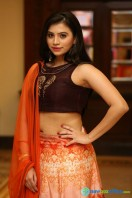 Priyanka Ramana at Apartment Audio Launch (21)
