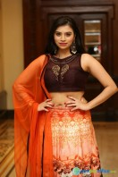 Priyanka Ramana at Apartment Audio Launch (23)