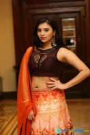Priyanka Ramana at Apartment Audio Launch (24)