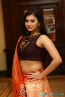 Priyanka Ramana at Apartment Audio Launch (29)