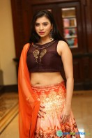 Priyanka Ramana at Apartment Audio Launch (33)