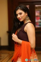 Priyanka Ramana at Apartment Audio Launch (37)