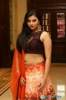 Priyanka Ramana at Apartment Audio Launch (40)
