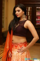 Priyanka Ramana at Apartment Audio Launch (41)