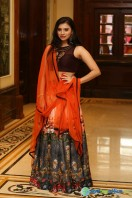 Priyanka Ramana at Apartment Audio Launch (7)