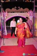 Raja Reddy Son Wedding Reception (11)
