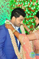 Raja Reddy Son Wedding Reception (27)