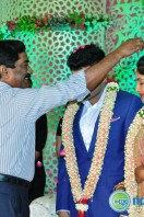 Raja Reddy Son Wedding Reception (30)