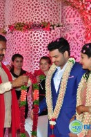 Raja Reddy Son Wedding Reception (31)