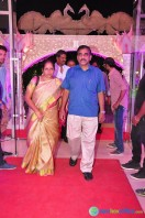 Raja Reddy Son Wedding Reception (4)