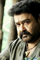 Mohanlal Stills in Pulimurugan (6)