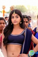 Vaishakham Song Stills (22)