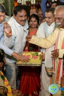 Bandaru Dattatreya Daughter Wedding (34)
