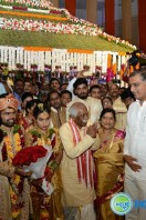 Bandaru Dattatreya Daughter Wedding (45)