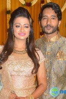 Pandu Son Pintu Wedding Reception Photos