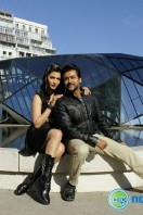 Singam 3 New Images (45)
