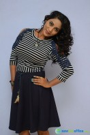 Meghana at HBD Audio Launch (14)