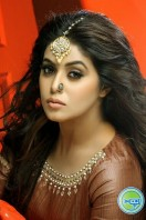 Poorna New Photoshoot (16)