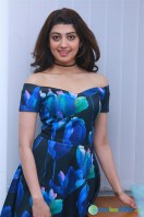 Pranitha New Photos (1)